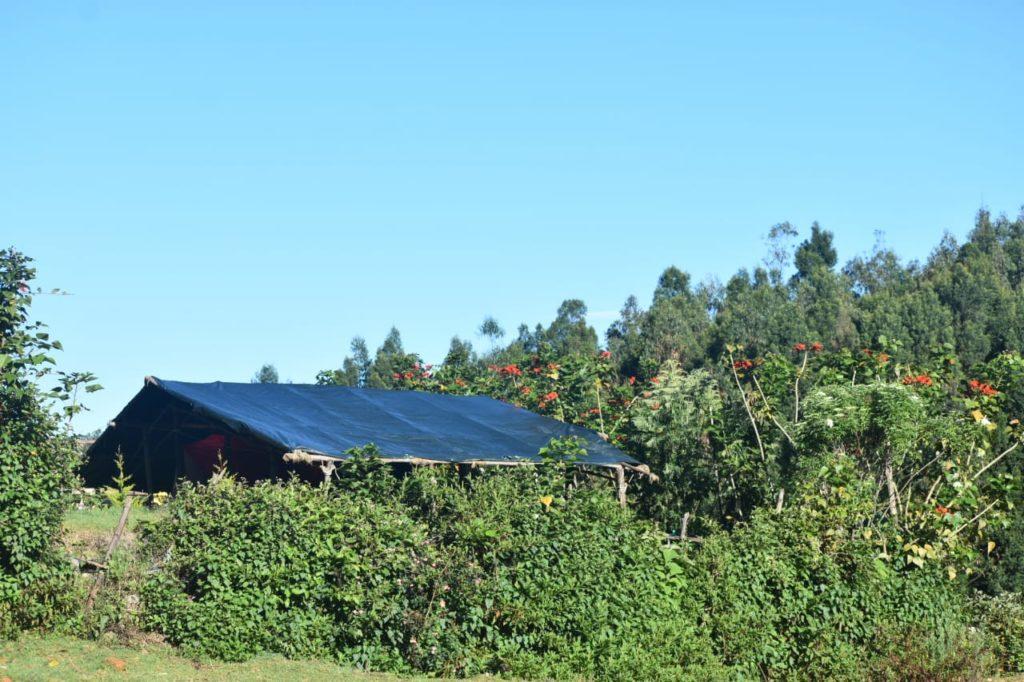 camping in kodaikanal